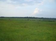 Коттеджный поселок Чубаровские холмы